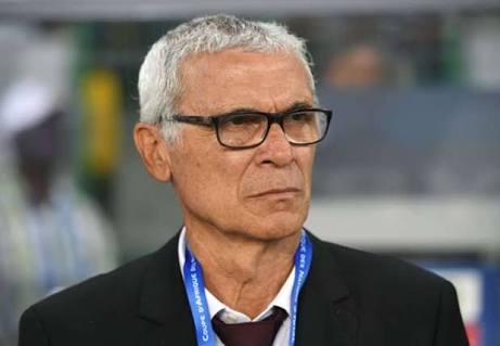 تجديد عقد كوبر مع منتخب مصر مهما كانت نتائج مصر في كأس العالم